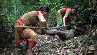 Primitive Survival - Two ethnic girls pick herbal medicine and meet primitive forest people