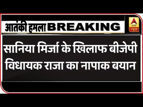 BJP MLA Targets Sania Mirza After Pulwama Attack | ABP News