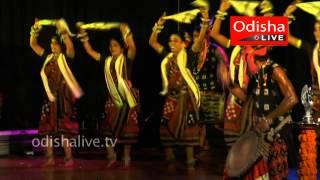Sambalpuri - Indian Folk Dance - Baisakhi Festival - Chinta O Chetana