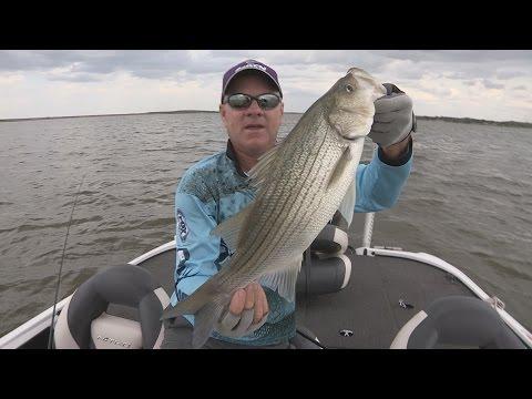 FOX Sports Outdoors SOUTHEAST #29 - 2015 Ft. Phantom Hill Lake, Texas Hybrid Striper Fishing