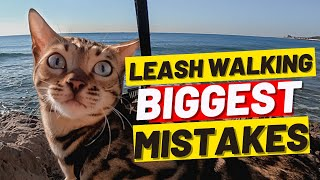 If You're Walking Your Cat DON't MAKE THESE 10 MISTAKES