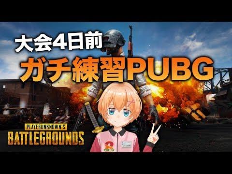 【PUBG】大会4日前!そろそろガチ練習PUBG【渋谷ハル】