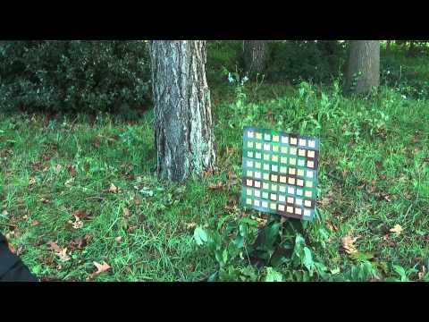 CAMELEON - adaptive camouflage