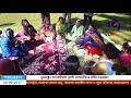 News  কানেকটিকাটে প্রবাসী বাংলাদেশিদের বার্ষিক বনভোজন