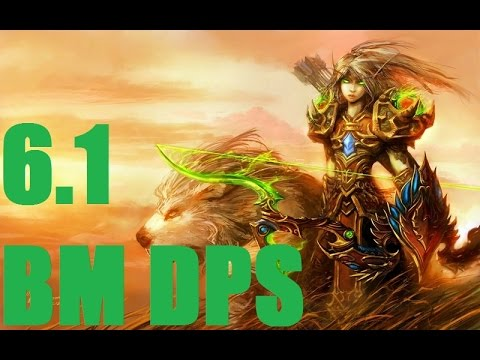 Beast Mastery Hunter DPS Guide Legion 73 - Noxxic