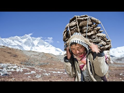 They carry it in the blood: the Himalayan Sherpas genetically adapted to the lack of oxygen.