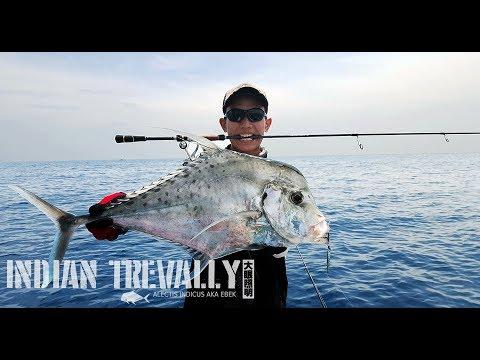 Salty Ninja Fishing - Jigging and Rompin the East Coast - Rompin Tioman Fishing