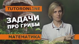 Математика | Задача про грибы