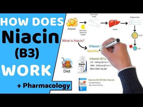 How does Niacin (B3) Work? (+ Pharmacology)