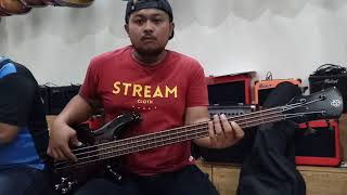 Review Bass Spector Fretless Original | FOR SALE