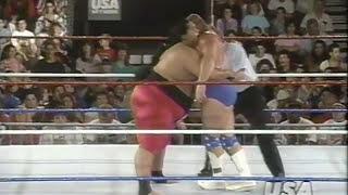 WWF Summerslam Spectacular 1993