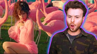 Camila Cabello - Liar (Music Video) REACTION