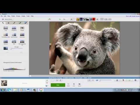 Best Tutorial On Picasa. Official Professional Look