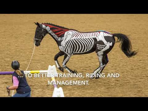 Horses Inside Out Lecture Demo With Gillian Higgins