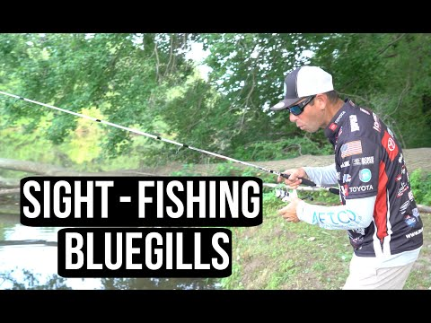 Bluegill Fishing with Mike Iaconelli - Ike In The Shop Bass