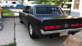 Tsp Texas speed 235/239 cam ls3