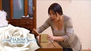¡Sofía descubre a la asesina de su hija!   Lo que oculta una mirada   La Rosa de Guadalupe