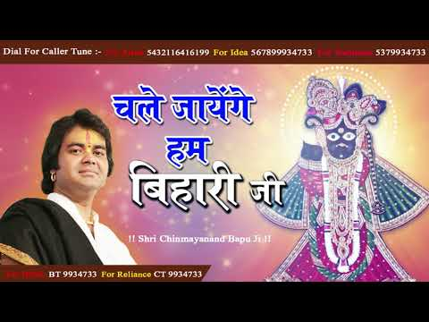 पीसफुल श्री कृष्णा भजन - Chale Jayenge Hum Bihari Ji - चले जायेंगे हम बिहारी जी #ChinmayanandBapuJi