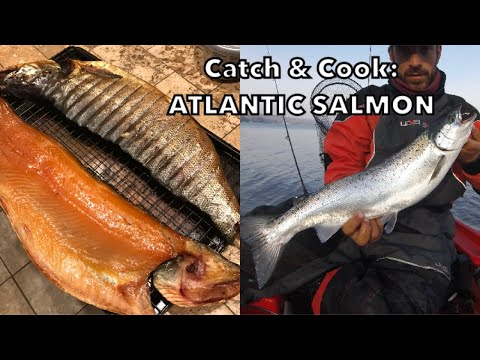 Catch, Clean, And Cook: ATLANTIC SALMON