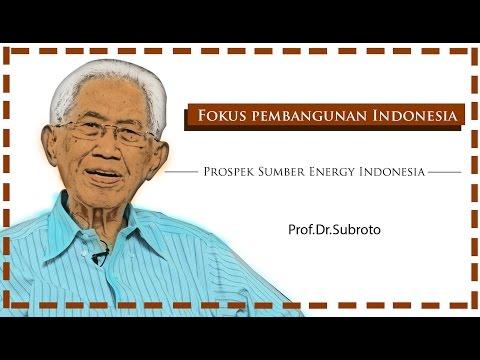 Prof. Dr. Subroto, Fokus Pembangunan Indonesia: Prospek Sumber Energy Indonesia