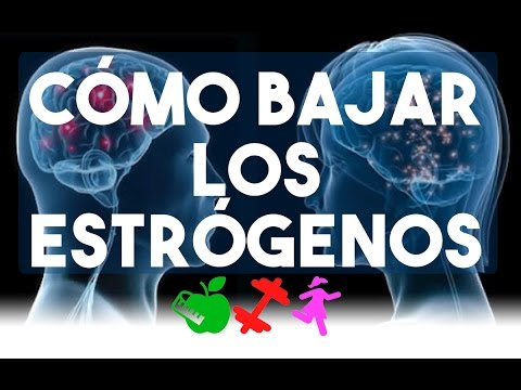 alimentos que bajan estrogenos