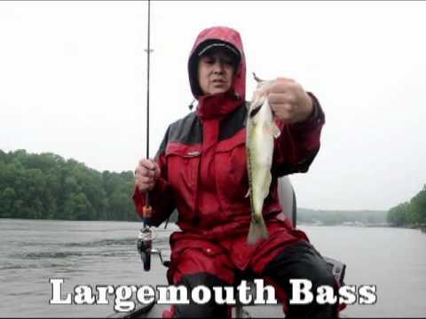 Bass Fishing Nobuyuki Terajima Wilson Lake 41712 Slider Grub.mp4