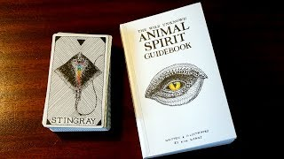 ANIMAL SPIRIT ORACLE (THE WILD UNKNOWN) // Unboxing + First Impressions