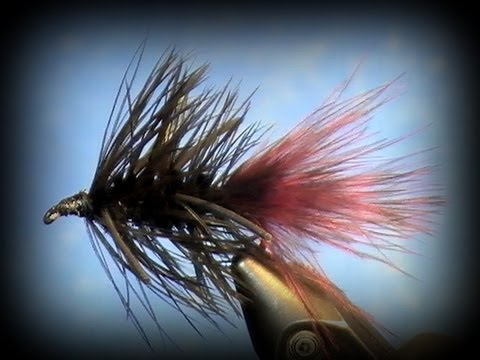 Fly Tying: Black Woolly Bugger (w/ variations)
