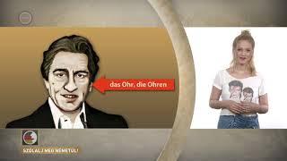 Szólalj meg! – németül, 2017. szeptember 25.