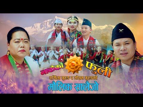 New Salaijo Song 2076||2019||नाकैको फुली||Nakaiko Fuli||Mousam Gurung||Sharmila Gurung