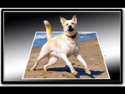 Como Sacar Una Imagen De Su Marco Efecto 3d Con PHOTOSHOP cs5 - YouTube