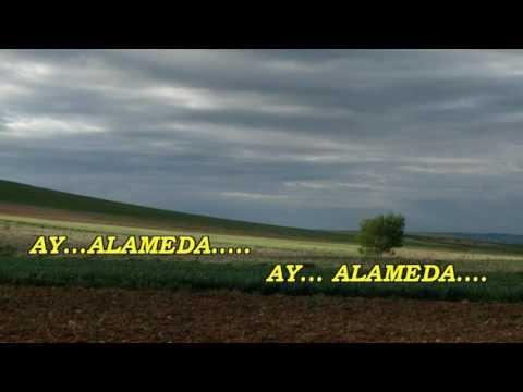 ALAMEDA - AIRE DE LA ALAMEDA