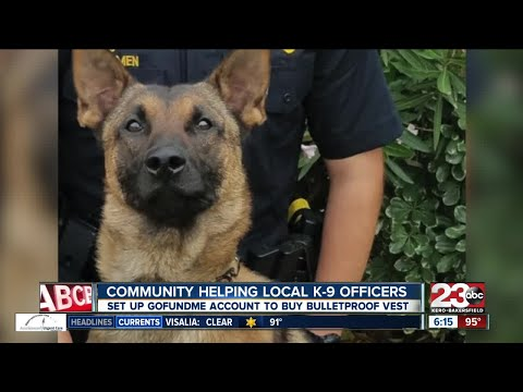 Local woman creates GoFundMe to get Bakersfield Police K-9 Officer a vest