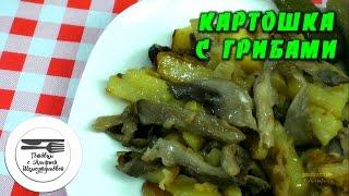 Жареные вешенки с картофелем и сметаной. Рецепт жареных  вешенок с картофелем и сметаной