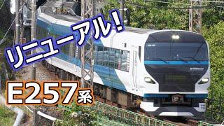 特急踊り子号(E257系2000番台) ~伊豆半島へ直行!~リニューアル特急電車
