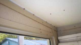 Ladybugs Take Over My House.