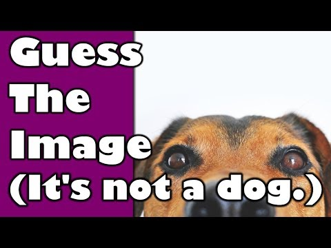 Only a Genius Can Guess the Image In Less Than 30 Seconds - 98342