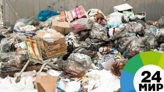 Вторая жизнь мусора: как на заводе в Чувашии сортируют отходы - МИР 24