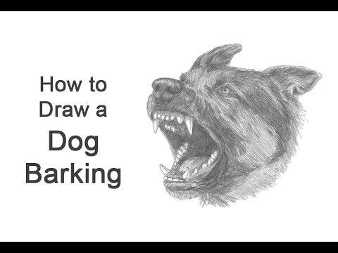 How To Draw A Dog Barking (German Shepherd)