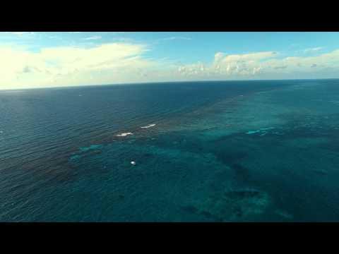 Mesoamerican Barrier Reef System Phantom 3