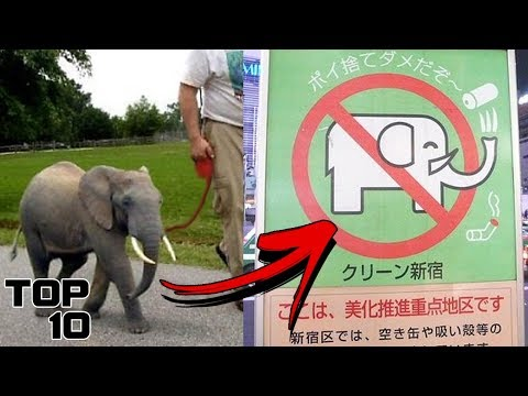 Download Youtube: Top 10 Insane Laws In Japan