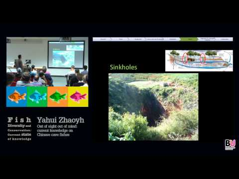 Yahui Zhaoyh- Fish Diversity and Conservation Conference