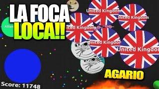 LA FOCA LOCA!! | AGARIO | +10000 PUNTOS | Rubinho vlc | Agar.io