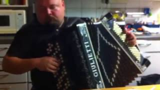 Metsäkukkia, accordion, Forest flower
