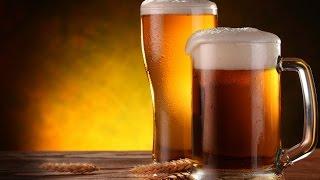Бизнес-план. Что такое крафтовое пиво?(, 2016-11-17T14:30:02.000Z)