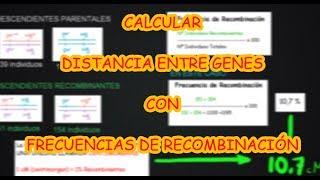 DISTANCIAS GENÉTICAS Y FRECUENCIA DE RECOMBINACIÓN