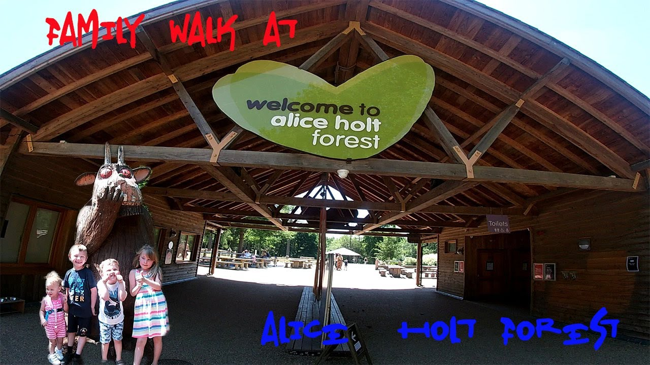 Find unique places to stay with local hosts in 191 countries. Family Walk At Alice Holt Forest Youtube