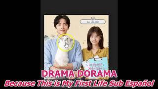 Reseña👍 DRAMA DORAMA Because This is My First Life Sub Español