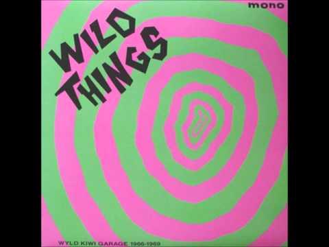 V.A. - Wild things vol .1 (Wyld kiwi garage 1966-1969)