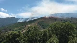 Wild fire on Corsica near Corte July 2017